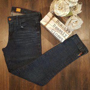 Pilcro & The Letterpress Stet Skinny Crop Jeans 26